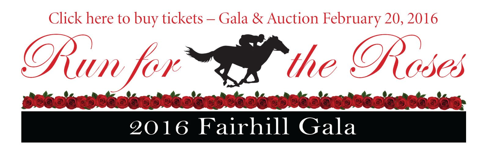 The Fairhill Gala and Auction February 20 2016